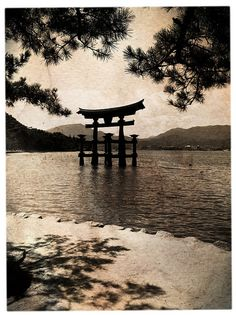 Puerta flotante de la isla de Miyajima, Japón. #Miyajima #Japón
