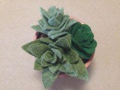 felt flowers/succulents