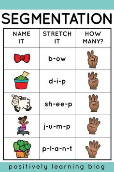 Segmentation made EASY with these hands-on learning tools! Read more about how my first graders tackled phonemic awareness this week. Phonemic Awareness Kindergarten, Kindergarten Goals, Phonological Awareness Activities, Kindergarten Phonics, Preschool, Zoo Phonics, Teaching Phonics, Phonics Activities, Emergent Literacy