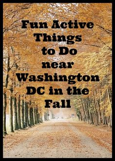 Fun Active Things to Do in Washington DC in the Fall Washington Dc Area, Washington Dc Travel, Georgetown Washington Dc, Living In Washington Dc, Forks Washington, Solo Travel, Travel Usa, Travel Tips, Oh The Places You'll Go