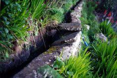 Acequia con tapa, encajada entre vegtación en ladera
