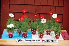 Guests received Gerbera daisies and real grass planted in mini polka-dot buckets as favors.