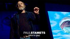 Paul Stamets: 6 ways mushrooms can save the world  Mycologist Paul Stamets lists 6 ways the mycelium fungus can help save the universe: cleaning polluted soil, making insecticides, treating smallpox and even flu ... Read more.