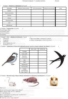 Háziállatok gyakorló dolgozat - 5. osztály számára Nature Study, Hold On, Cute Animals, Classroom, Learning, School, Kids, Geography, Pretty Animals