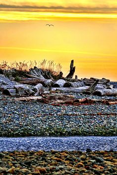 Sunrise on the Beach photograph by Peggy Collins on Fine Art America. Original Paintings, Original Art, Invisible Cities, Dawn And Dusk, Beach Landscape, Beautiful World, Fractals, Wonders Of The World, Fine Art America