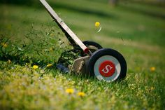 Put away those gas powered mowers, and go old school with a reel mower. You will get a great workout and help the environment!