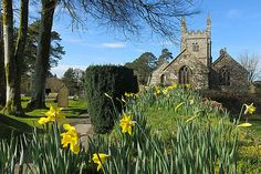 WMN View: Sunny spring day at Lydford Church on Dartmoor by Colin Sargent | Western Morning News