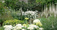 Perennial Whites White Gardens, Small Gardens, Outdoor Gardens, Garden On A Hill, Moon Garden, Sloped Garden, Flower Landscape, Green Lawn, Garden Spaces