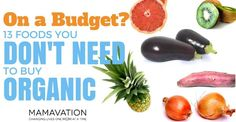 On a Budget? 13 Foods You Don't NEED to Buy Organic - Mamavation