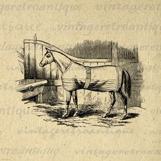 Antique Horse Graphic Image Digital Download Printable Illustration Vintage Clip Art. High resolution, high quality digital illustration. This printable digital image download works well for iron on transfers, printing, tote bags, papercrafts, and much more. Real printable vintage art. Great for use on etsy items. This digital graphic is high quality at 8½ x 11 inches large. Transparent background PNG version included.