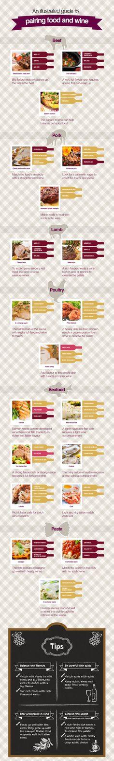 Guide To Paring Food And Wine