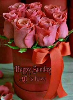 Happy Sunday Happy Sunday Morning, Happy Sunday Quotes, Good Morning Wishes, Good Morning Quotes, Happy Day, Have A Beautiful Sunday, Sunday Love, Happy Sunday Flowers, Birthday Wishes