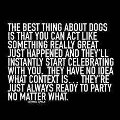 The best thing about dogs...