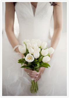 white tulip bouquet & tulle