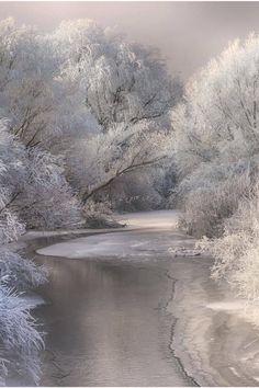 Winterwunderland. Ein Traum in Weiß.