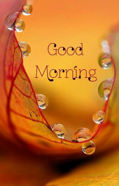 Morning Thoughts, Good Morning Messages, Good Morning Greetings, Good Morning Images, American Flag Images, Good Morning Beautiful People, Radha Krishna Love Quotes, Smile Wallpaper, Love Images