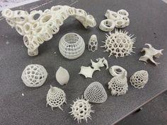 Andrei Jippa's RepRap 3D prints.