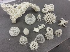 Radiolaria : Andrei Jippa's RepRap 3D prints . https://wewanttolearn.files.wordpress.com/2013/11/20131031_180253.jpg?w=545&h=408