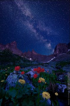 Night Mountain Spirits, Russia, by Ermolitskii Alexander,