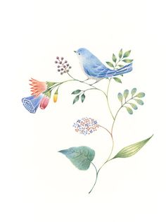 """Little Blue Bird and Flowers"" −RiLi, picture book, illustration, design…"