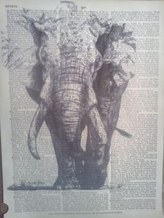 #elephant #illustration #old #dictionary #art