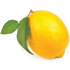 Collection of fruits name in English with high quality fruit images and fruit videos. Also, included fun facts about every fruit, fruits chart and fruits stickers. Fruits Name In English, Lemon Drawing, Lemon Pictures, Fruit Names, Produce Market, Lemon Uses, Fruit Picture, Fruits Images, First Fathers Day Gifts