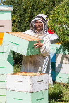 Portrait of beekeeper carrying honeycomb box while working at apiary Poster. Bee Keeping, Royalty Free Photos, Clip Art, Stock Photos, Portrait, Bees, Image, Flowers, Headshot Photography