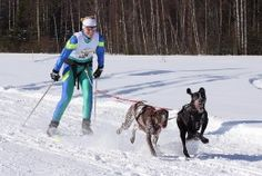 bikejoring and skijoring