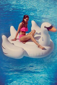 Jumbo inflatable swan...