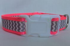 Neon Chevron Dog Collar by GibbonsRibbons on Etsy, $18.00
