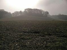 Mist over the Kentish mud.