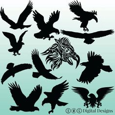 12 Eagle Silhouette Clipart Images Clipart by OMGDIGITALDESIGNS