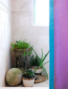 Decorating Tips from Interior Designer Eileen Kathryn Boyd - Traditional Home®  Love this idea of adding plants to the shower.