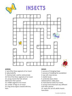 Canny image with kids crossword puzzle printable