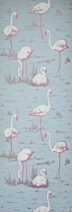Cole and Son Wallpaper Flamingos on Blue HALF A by romolly