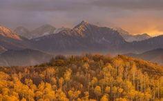 Háttérképek erdő, hegyek, ősz, napnyugta, természet, ég
