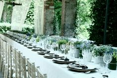 white potted flower centerpieces, could double as favors?