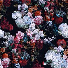 Imagen de flowers, grunge, and wallpaper
