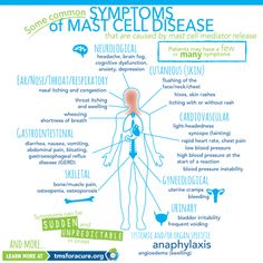 Dysautonomia, Ehlers-Danlos Syndrome (EDS) and Mast Cell Activation Disease (MCAD/MCAS) are often found together. Doctors still aren't… Disease Symptoms, Autoimmune Disease, Lyme Disease, Ehlers Danlos Syndrome Symptoms, Fatigue Syndrome, Histamine Intolerance Symptoms, Mast Cell Activation Syndrome, Urticaria, Top