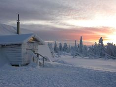 Sunrise on the snow covered horizon Lapland Finland, Chasing Dreams, Winter Scenery, Arctic Circle, Baltic Sea, Winter Is Coming, Helsinki, Winter Snow, Winter Wonderland