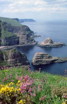 """""""out of the way"""" scotland  The cliffs of the outer Moray  Firth, between Banff and Fraserburgh. I won't say exactly where, because it's off the beaten track."""