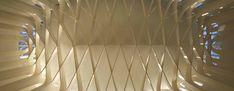 Níall McLaughlin Architects