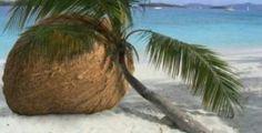 Keys, big coco nut lol