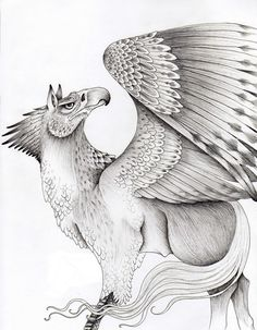 hippogriff | hippogriff by verreaux traditional art drawings fantasy 2011 2014 ...