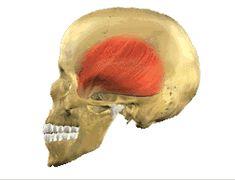 Núcleo Implantar   Tratamentos odontologicos, Clinica especializada em Implantes, Clinica em Belo Horizonte