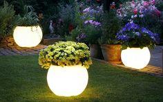 Iluminación del jardín - Macetas de plantas que brillan en la oscuridad