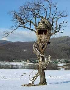 The tiny treehouse with a spiral stairway pictured was created by Japanese designer, Takashi Kobayashi of Tree House People. Deer Hunting Blinds, Bow Hunting, Coyote Hunting, Pheasant Hunting, Archery Hunting, Outdoor Life, Outdoor Travel, Hunting Stands, Deer Stands