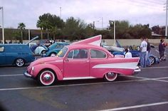 Beetle with fins!
