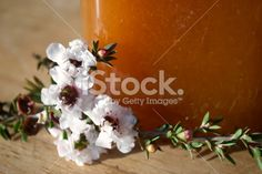 Manuka Honey and Flower in Soft Focus Royalty Free Stock Photo
