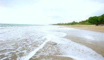 New in the Property Portfoio - Andromeda Ocean Estates, Pedasi – Panama Nerium International, New Property, Beautiful Ocean, Panama, Places To Visit, Beach, Water, Outdoor, Gripe Water